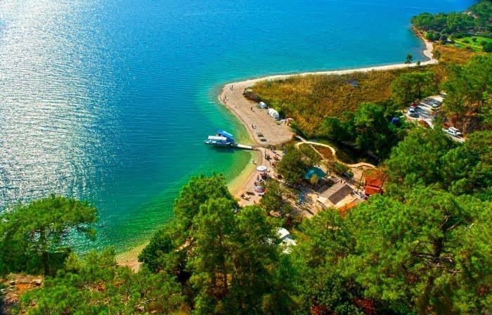 Akyaka Orman Kamp Alanı - Kampbros
